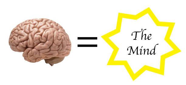 Brain-=-Mind