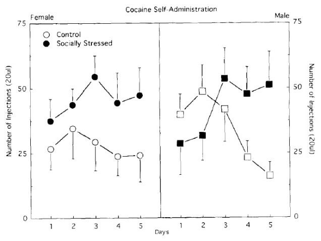 Figure 2: The effect of social stress on cocaine self-administration.