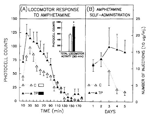 Figure 2: Impact of stress on the behavioral effects of amphetamine. Locomotor activity (left panel) and self-administration (right panel).