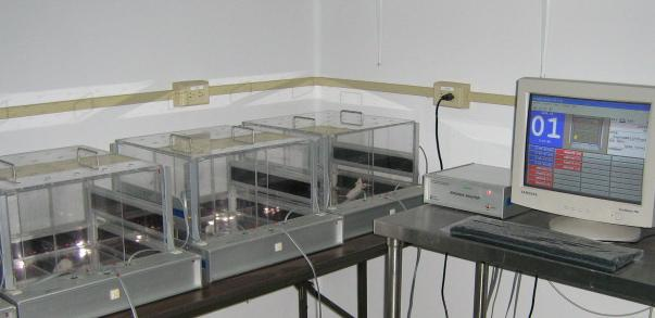 Multiple test boxes with a computer that collects the data. Image from Douglas Mental Health Institute (http://www.douglas.qc.ca/page/neurophenotyping-motor-function).