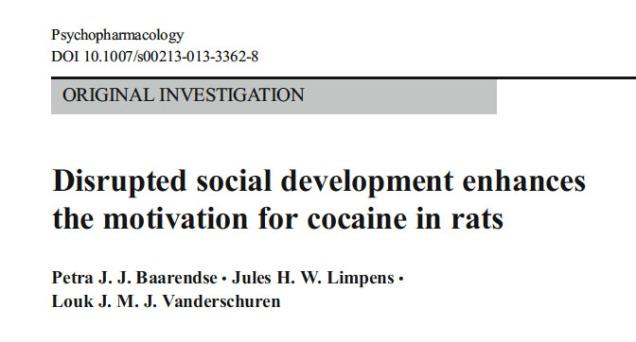 Title. Baarendse PJJ et al. 2011