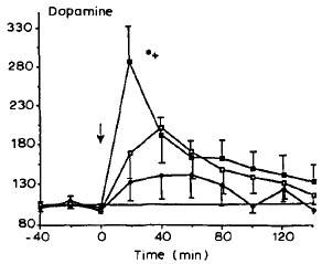 Sorg 1991. Figure 2