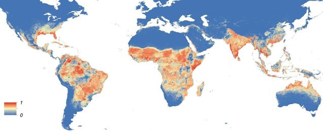 Global distribution of Aedes aegypti mosquitoes (commons.wikimedia.org)