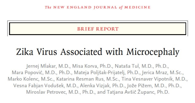 Microcephaly NEJM