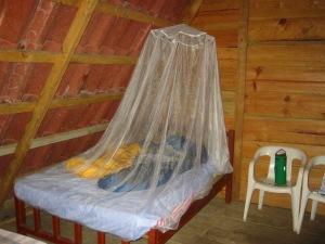 Mosquito netting (commons.wikimedia.org)